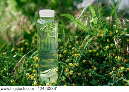 Bottle Of Water Stands On The Green Tall Grass Among Yellow Wildflowers