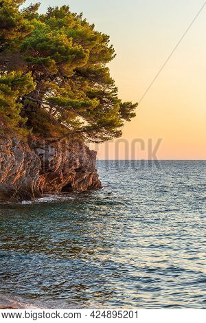 Picturesque Cliffs With Pine Trees At The Adriatic Sea At Sunset. View From Petrovac Na Moru Beach I