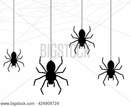 Spider Collection, Cobweb Isolated On White Background. Illustration For Halloween Design. Spider We
