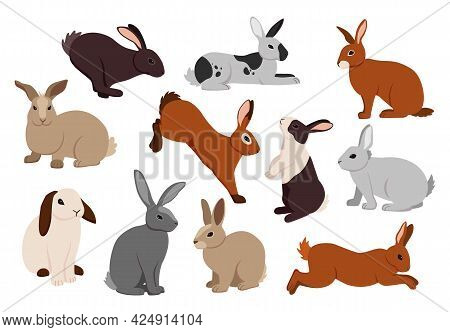 Cartoon Hare. Cute Bunny In Different Poses. Fluffy Farm Rabbits Jumping And Running. Funny Pets Sit