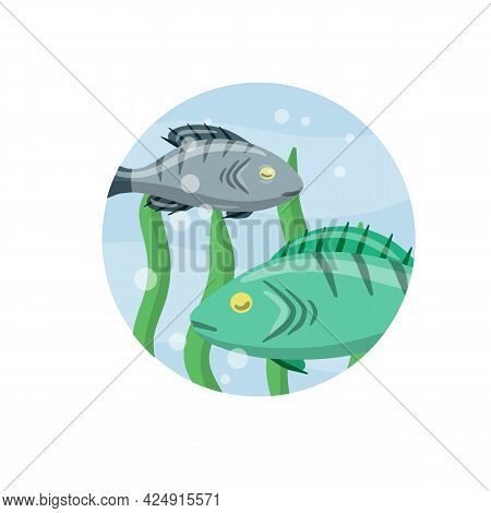 Set Of Fish. River Animal With Scales, Fins And Tail. Underwater Life. Water With Algae. Wildlife Ic