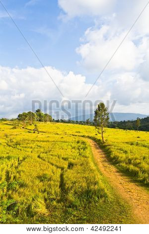 Tropical Mountain Range, Thailand