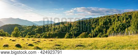 Rural Panorama In Mountains At Sunset. Trees And Fields On Grassy Rolling Hills. Beautiful Countrysi