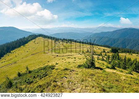 Carpathian Mountain Landscape In Summertime. Beautiful Countryside Scenery With Trees On The Grassy