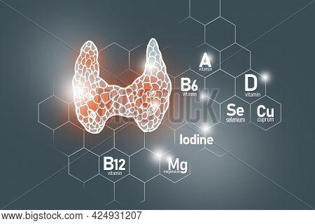 Essential Nutrients For Thyroid Gland Health Including Iodine, Selenuim, Vitamin B6, Cuprum. Design