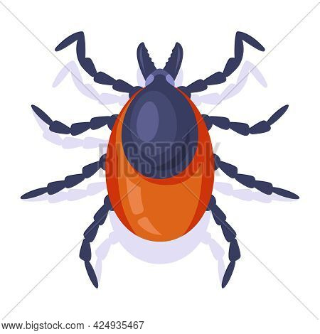Forest Encephalitis Tick On A White Background. Insect Dangerous To Humans. Flat Vector Illustration