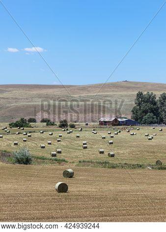 Rural Scene Near Bathurst In Central Nsw Featuring Round Hay Bales. Bathurst Nsw Australia.