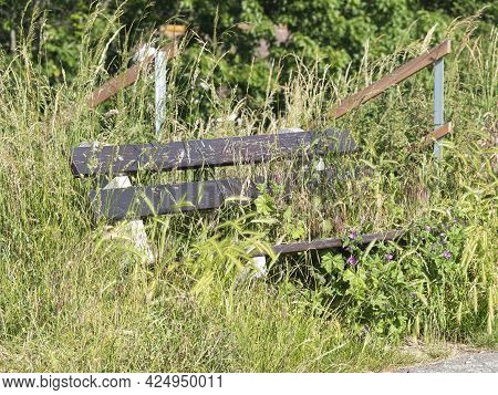 Wooden Bench In A Park Completely Overgrown With Weeds