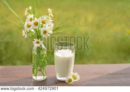 A Glass Of Milk Stands On A Wooden Table Next To A Bouquet Of Daisies And Wheat Spikelets On A Natur