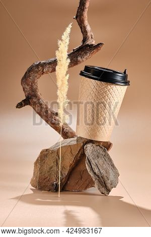 Plastic Beige Glass Of Coffee With Black Lid In A Balancing Composition On Sandstone Stone With Pine
