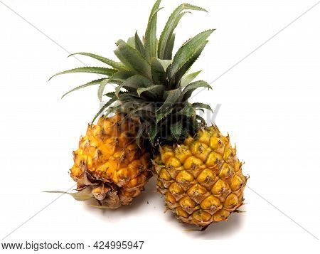 Picure Of Pineapple (ananas Comosus), A Fruit That Usually Grow At Tropical Area. This Fruit Has Man