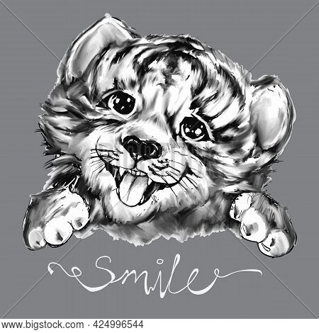 Smile Funny Tiger Head For Tee Print Design For Kids. Black, Grey, White Cute Baby Tiger Face, Portr