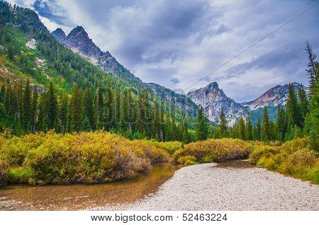 Beautiful Autumn Near Cascade Creek - Grand Teton National Park