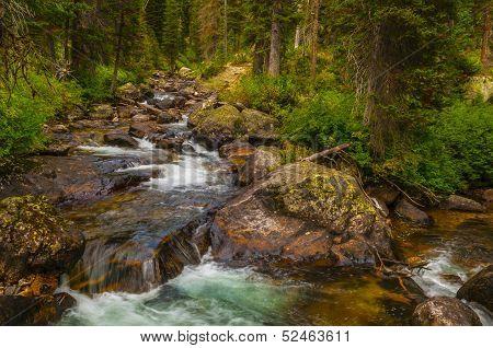 Cascade Creek Grand Tetons