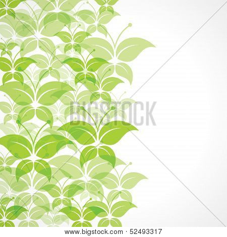 Green butterfly background stock vector