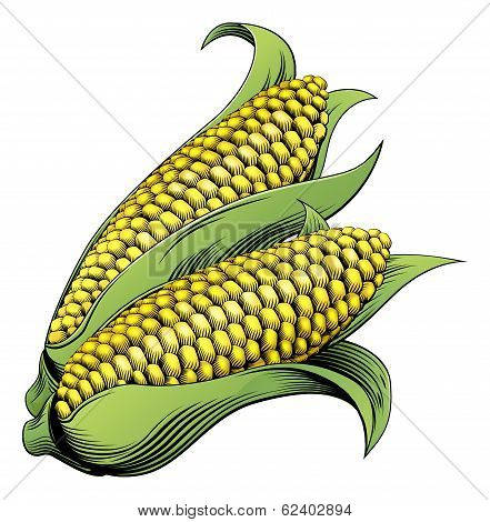 Corn Vintage Woodcut Illustration
