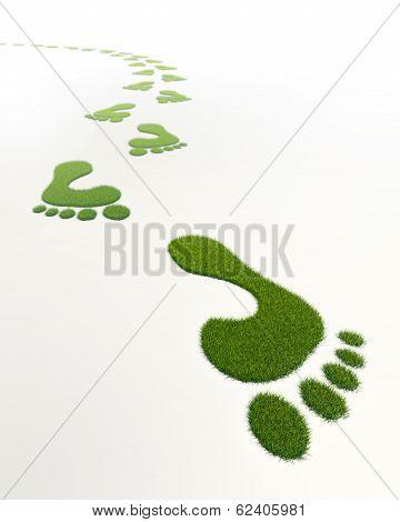 Grass Green Footprints