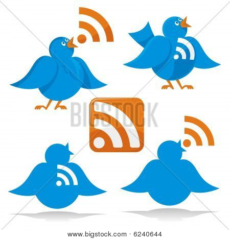 Bird with RSS