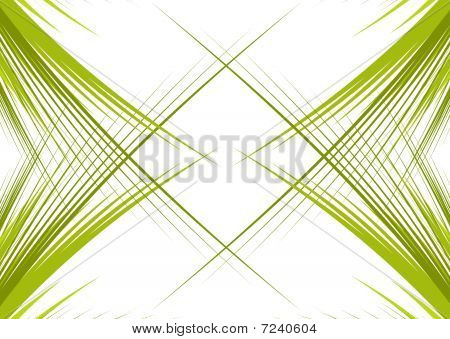 Green branches isolated on white background with space oy your text poster