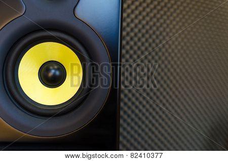 Music Studio Speaker/loudspeaker