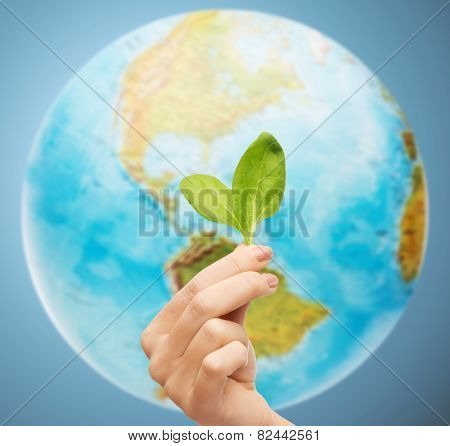 people, ecology, environment, agriculture and food concept - close up of woman hand with green sprout over earth globe over blue background poster