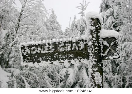 Icy sign in the Habichtswald mountains