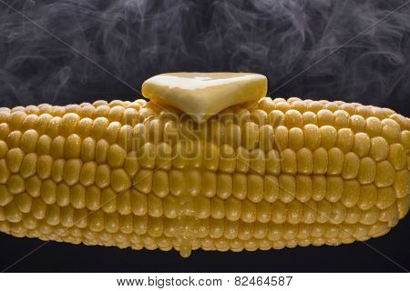Steaming Hot Corn on the Cob