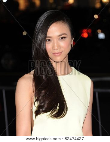 LOS ANGELES - JAN 08:  Tang Wei arrives to the