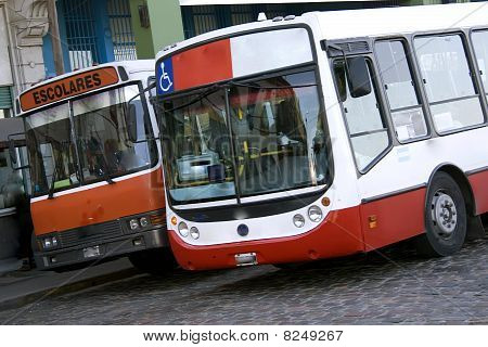 Bus Passenger Transport