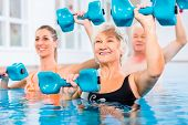 People young and senior in water gymnastics physiotherapy with dumbbells poster