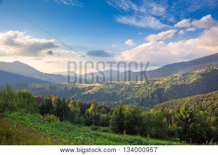 Summer day in The Mountain Valley, beautiful nature,  Carpathian, Ukraine, Europe