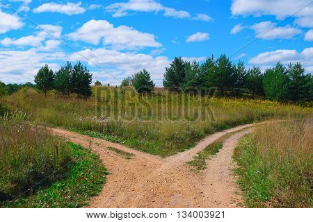 Rural landscape with crossroad on hill in forest