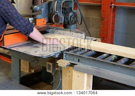 carpenter working on cutting plank with industrial machine