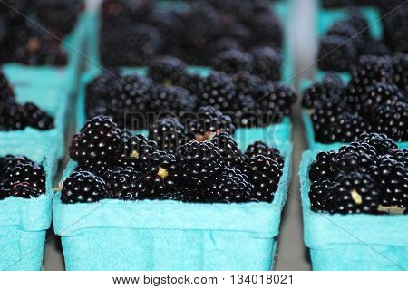 fresh blackberry fruit in containers for sale