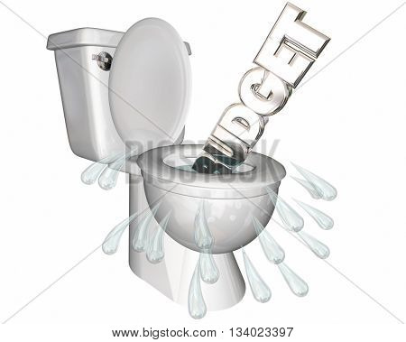 Budget Overspending Waste Money Flush Toilet 3d Illustration