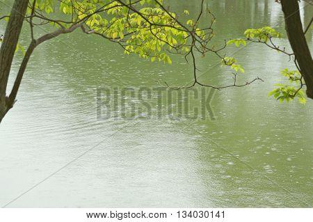 Water Texture Background
