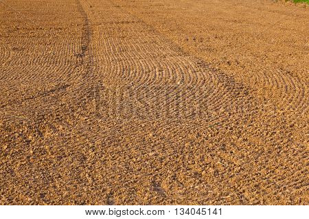 Mark Of Tire On Field