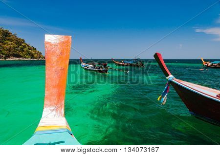 Snorkeling spot where longtail boats dock and let traveller snorkling around to see colorful coral and marine life under water at Lipe island Satun Thailand
