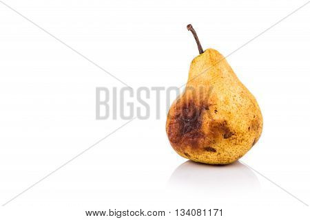 Rotten And Decomposing Pear On White Background