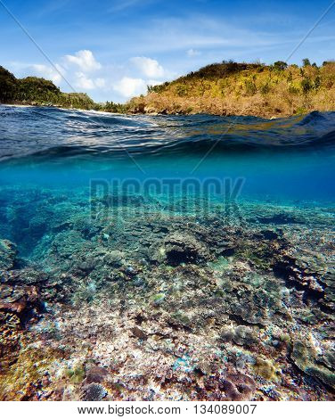 Underwater And Surface Split View In The Tropics