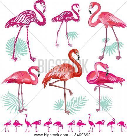 Set of pink flamingos