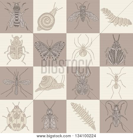 Hand drawn beetles set. Insects for design icons logo print or else. Vector illustration.