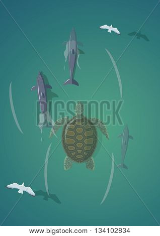 Turtle and dolphins.Top view vector illustration.