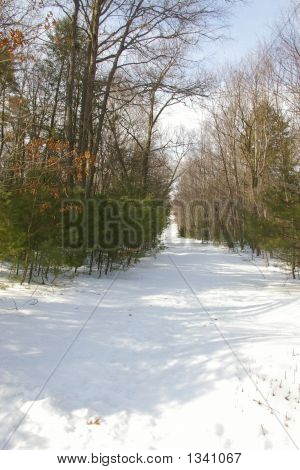 Snow Covered Path