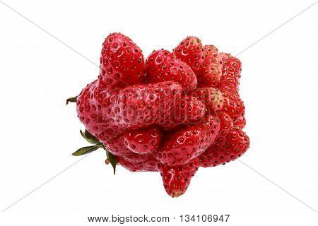 Many small strawberries grown together into one large. Object on a white background.