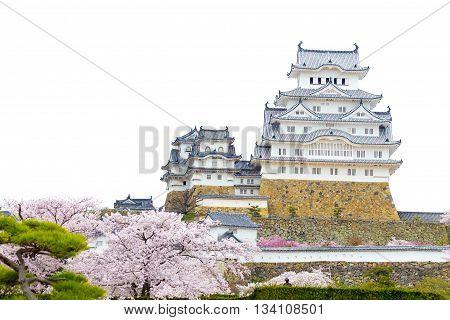 Himeji Castle and sakura blossom with white sky in Himeji, Japan