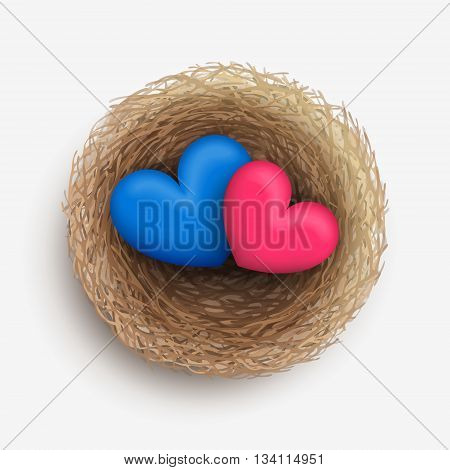 Blue and pink hearts are laying together in nest. Love and harmony in family life. Heterosexual couple concept