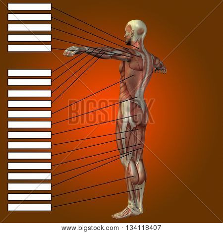 3D illustration of a concept or conceptual strong young male man bodybuilder vs underweight thin on blue background