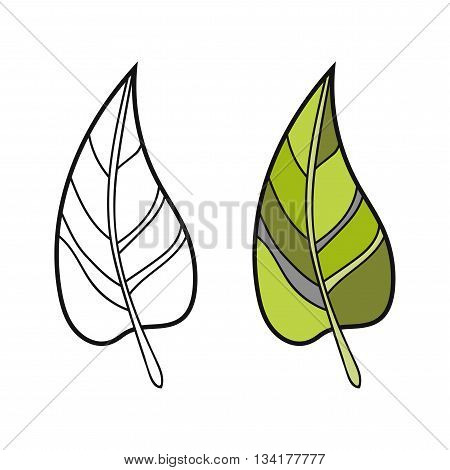 Black and white, coloured leaf for coloring book. Floral object. Vector illustration