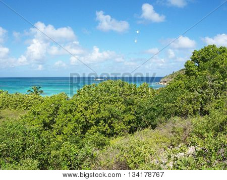 Antiguan Landscape Overlooking the Caribbean Sea in Spring